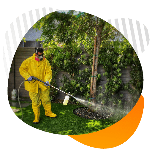Artificial turf cleaning guide