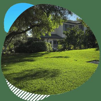 natural looking artificial grass-1