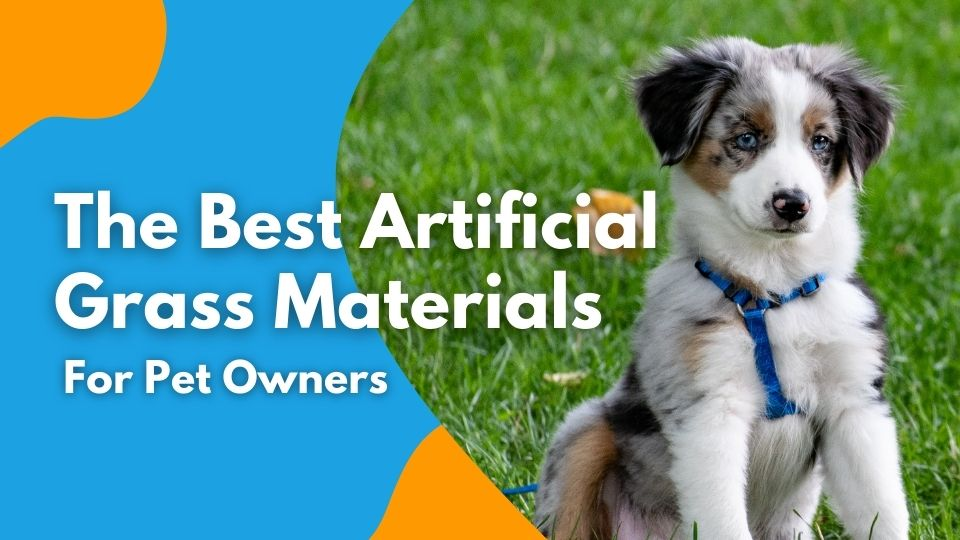 The Best Artificial Grass Materials for Pet Owners