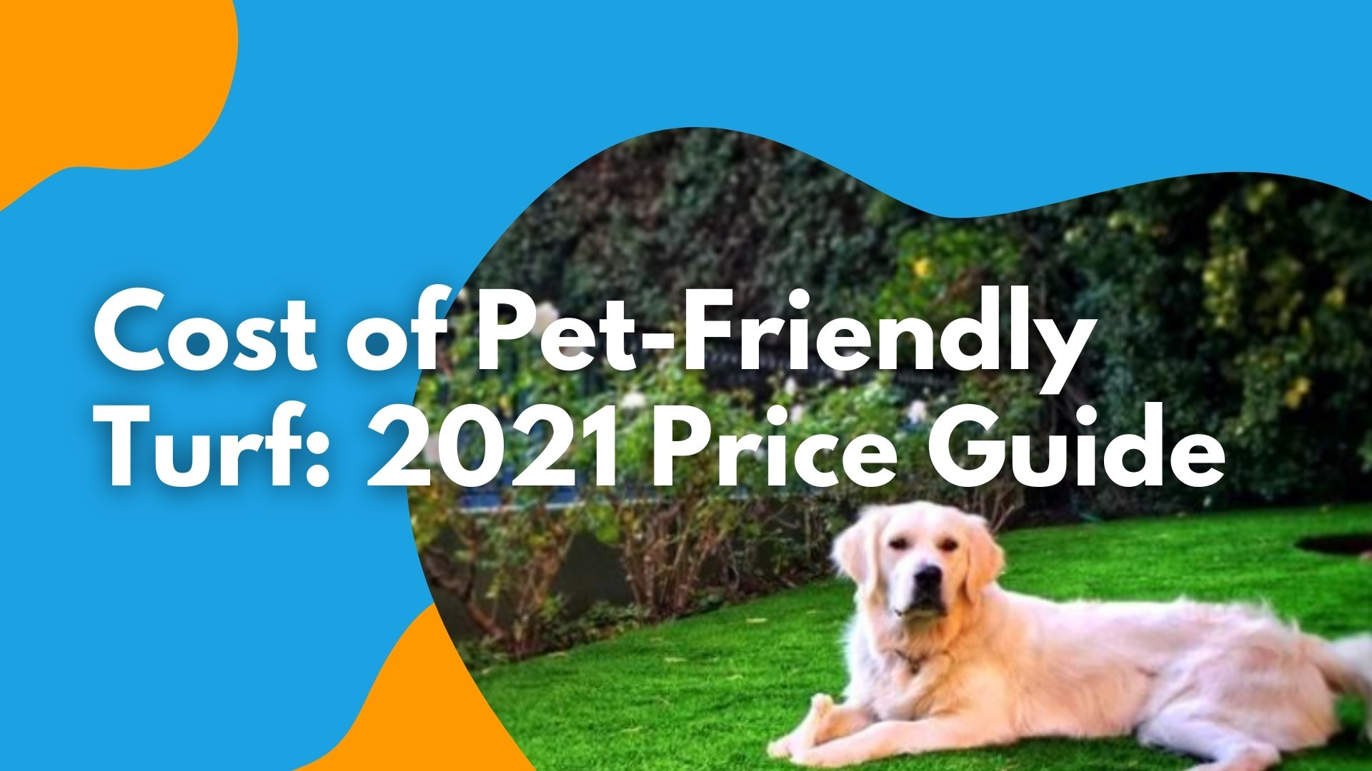 Cost of Pet-Friendly Turf Installation 2021