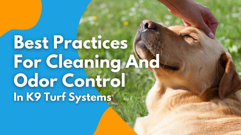 Best Practices for Cleaning and Odor Control in k9 Turf Systems