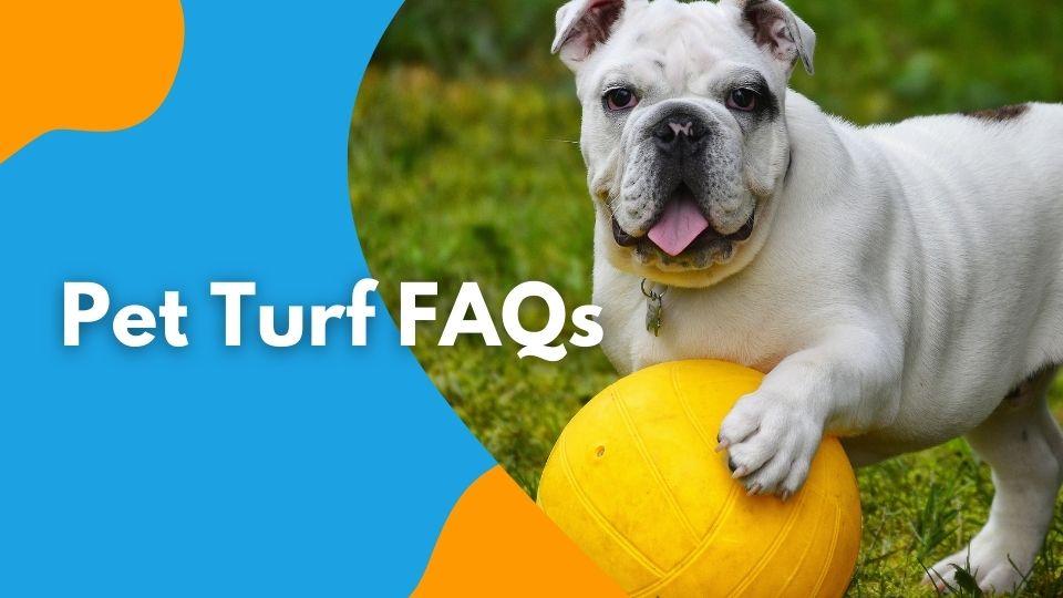 Pet Turf FAQs