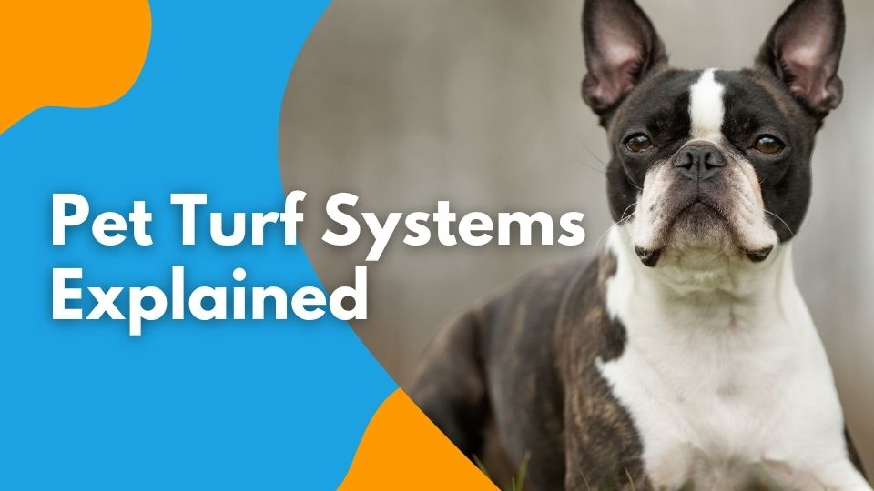 Pet Turf Systems Explained