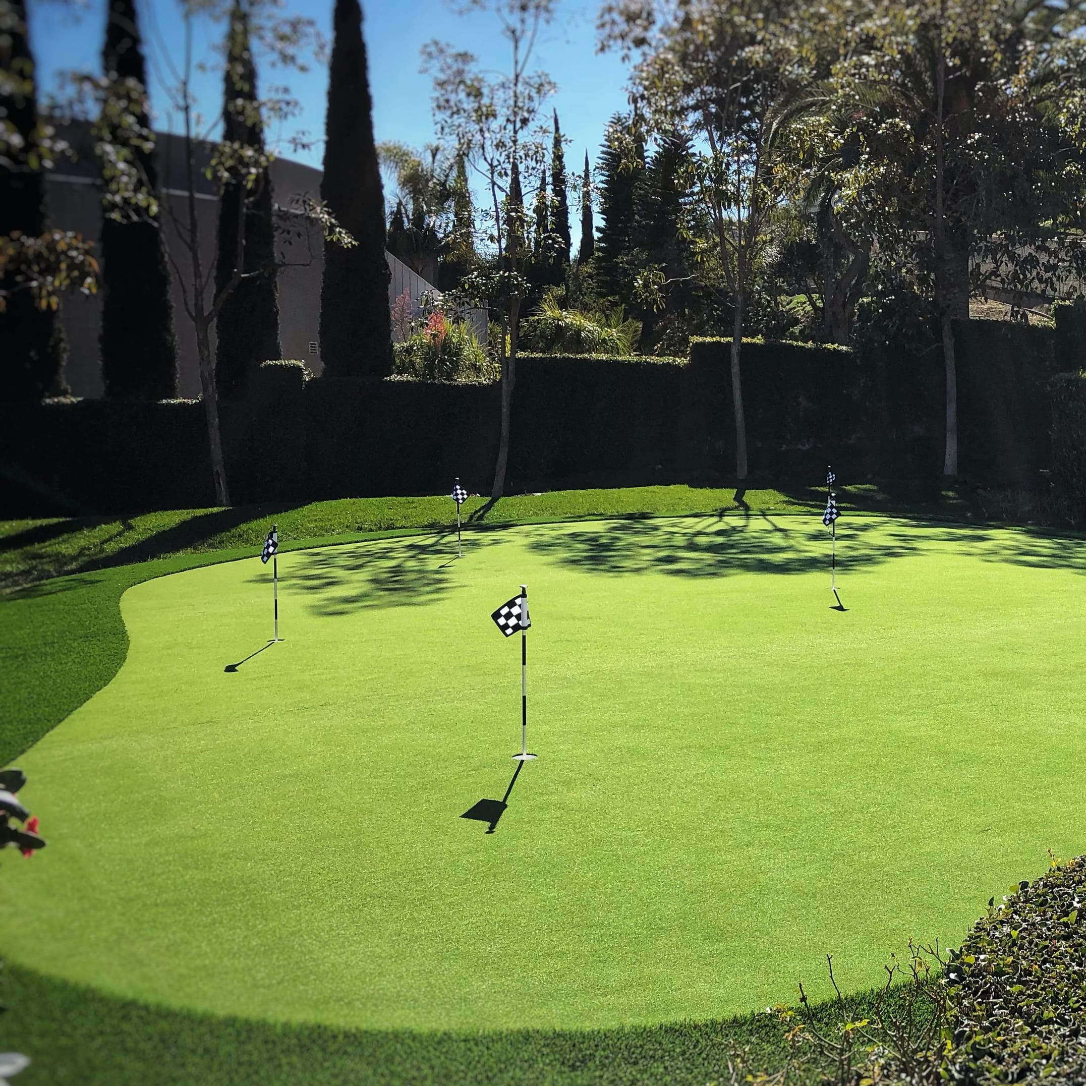 putting green large area