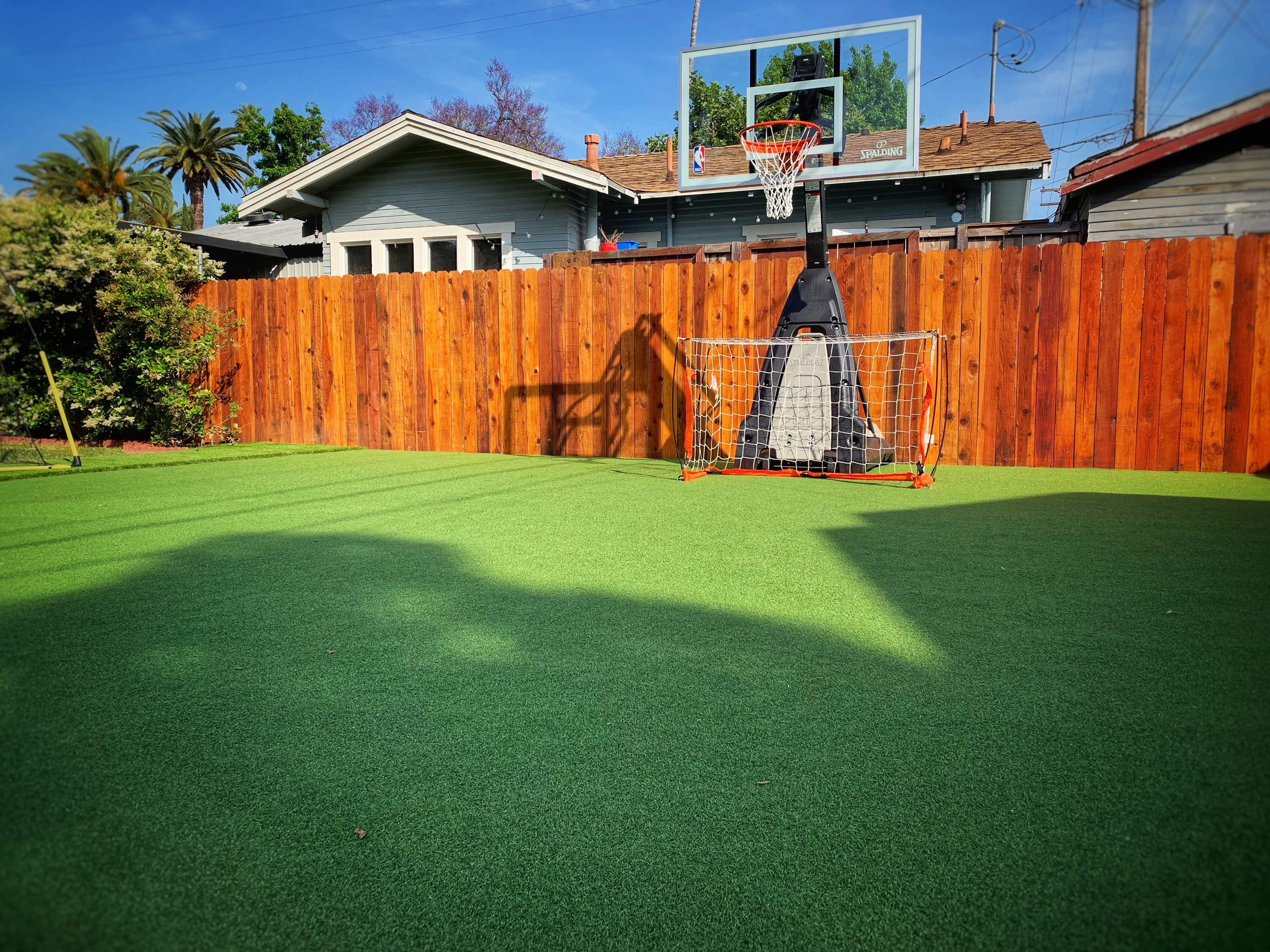 sports and putting green surface